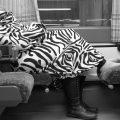 oreiller de voyage